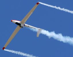 Jet Powered Glider 2 by shelbs2