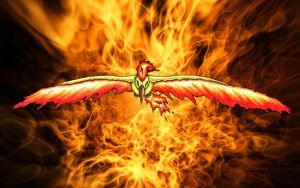 MOLTRES The master of fire by Acrof