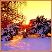 Winter Sunset sQuare Format by Aivaseda
