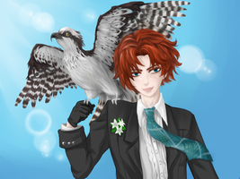 APH: Taking Flight by Misharoyuki