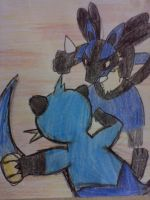 Dewott vs Lucario by Cacah05