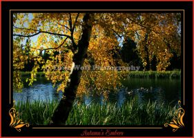 Autumn's Embers by LoneWolfPhotography