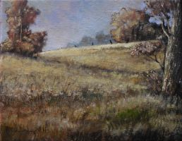 (field) Landscape Oil Paint by Boias
