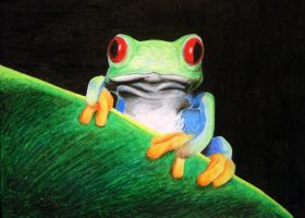 Oil Pastel Tree Frog by crimmy