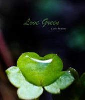 Love Green by lapati