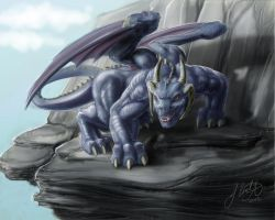 Commission: blue dragon by tauceti