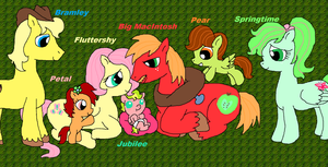 Fluttershy's Family (REMADE) by PurfectPrincessGirl