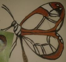 Butterfly by Perianth5