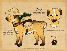 Pao *ref sheet* by meokami