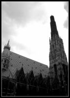 St. Stephens Cathedral. by SpeJa