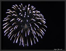 July 4th, 2008 Fireworks 01 by AnimaSoucoyant