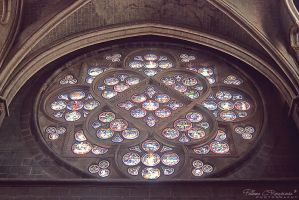 Lausanne Cathedral by LoMiTa