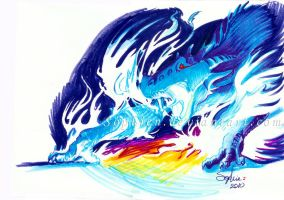 dragon dash by sophien
