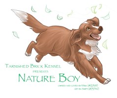 FP Comm - Nature Boy by shelzie