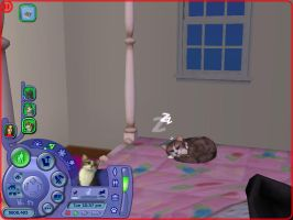 Sims 2 Pets/Seasons Kitty on bed by Anime210freak