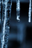 Icy drops by RLPhotographs
