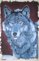 Blue Wolf by CaptainFreetoast