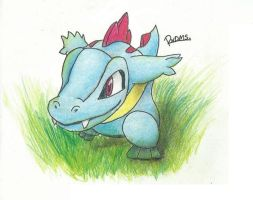 Totodile! by Randomous
