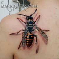 Wasp by amduhan