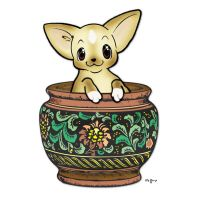 Terra Cotta Smooth Chihuahua by msmickimac