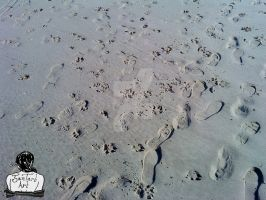 Footprints In The Sand by JamTartArt
