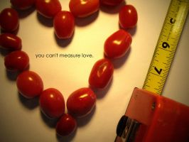 you can't measure love by ZusaLiko