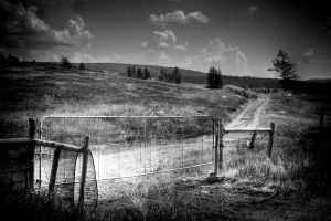 Gate by pfister