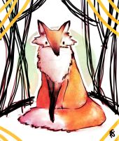 Red fox by Federica-Amico