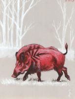 The Red Boar by Dustmeat