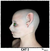 Cat I by Spacix