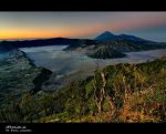 bromo I'm in Love II by hirza