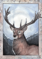 Hill Stag by MorRokko