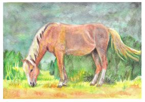 'A good life...' by Paintwick