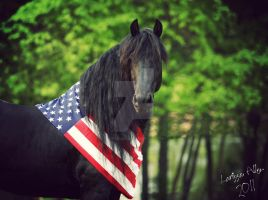 Liberty for All by LarissaAllen