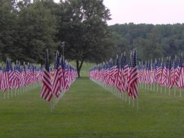 Memorial Flags 2006 by Shara-Moonglow
