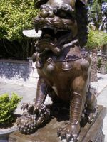 Foo Dog by Zelkova-101