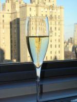 Champagne and Central Park by CassandraStock