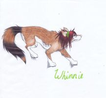 Whinnie :D by StormyKitsune