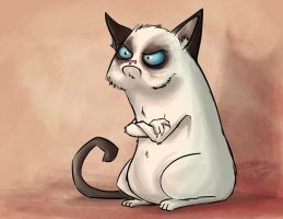 Grumpy Cat by Sodano