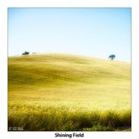 Shining Field _colors v._ by Marcello-Paoli