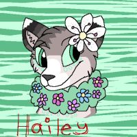 Hailey the Wolf by dragonpop1