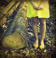 Yellow in the woods by AntonellaB