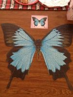 Real Butterfly Puzzle by EmoInuyasha