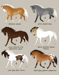 Horse Design Adopts *reduced* by horsy1050