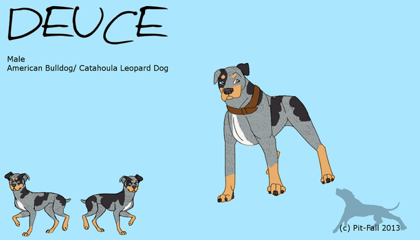 Deuce Reference Sheet by Pit-Fall