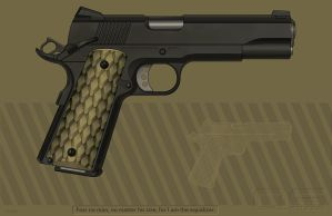 DVC 1911 Custom Pistol by cityofthesouth