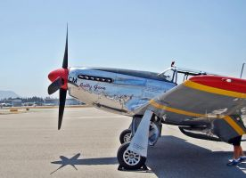 North American TP-51 Mustang BETTY JANE 2 by StormbringerPhoto