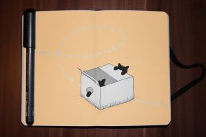 #35 The Box by Zerolution