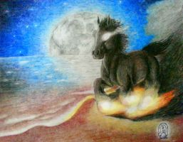 'Midnight Magic, Stallion of the Sea'(2014 Redraw) by AnScathMarcach