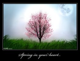 Spring in your heart... by Hias